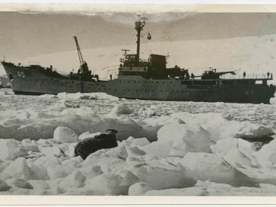 Buque Piloto Pardo fotografiado durante filmación de documental en la Antártica.