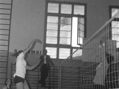Vóleibol femenino