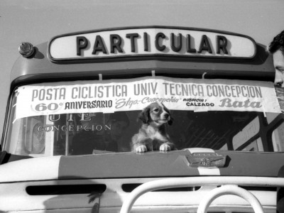 Posta ciclística de estudiantes en el marco de las celebraciones del sexagésimo aniversario de la sede UTE Concepción. 1965.